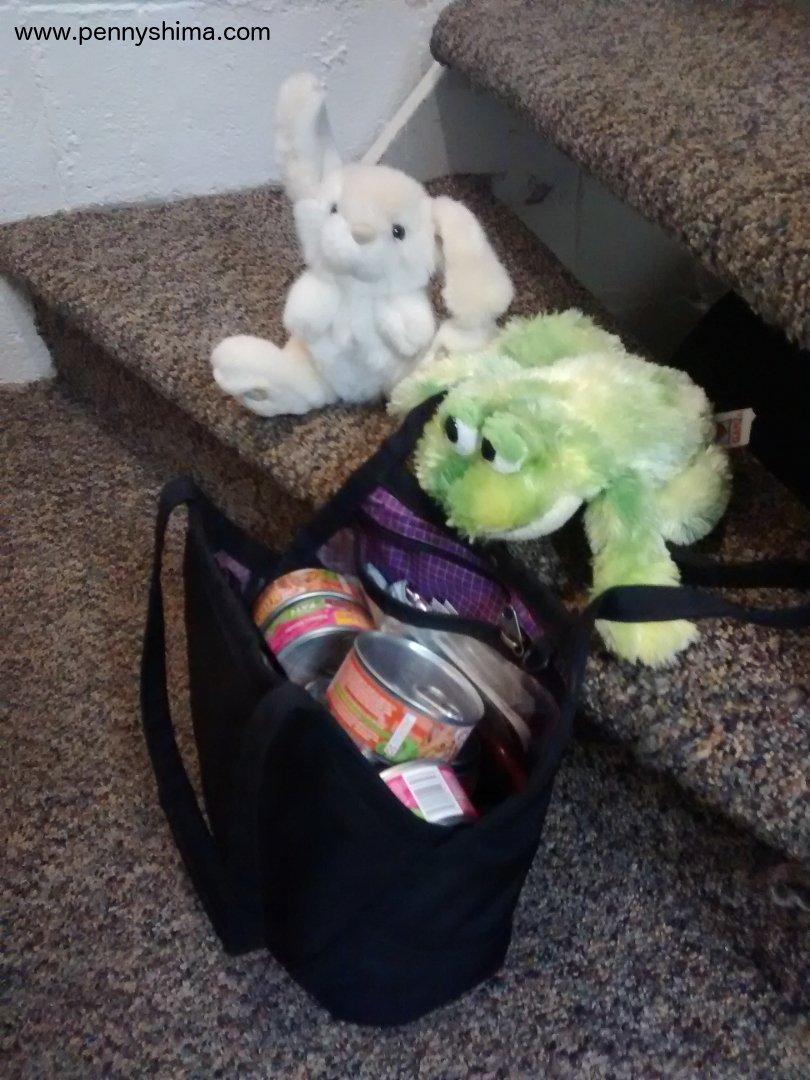Tom Bihn Little Swift with cat food & kitten toys
