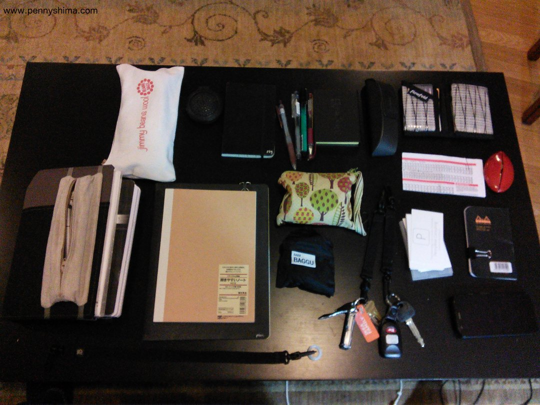 contents of my Tom Bihn Little Swift