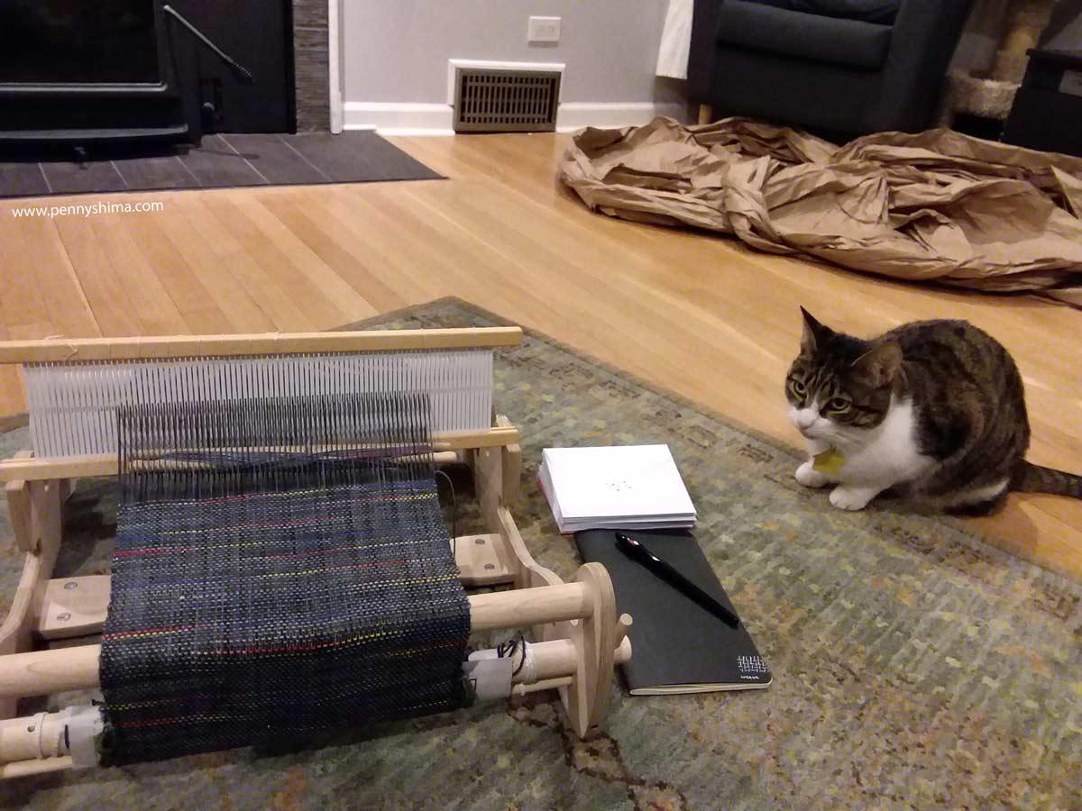 Buddy Cat and rigid heddle loom
