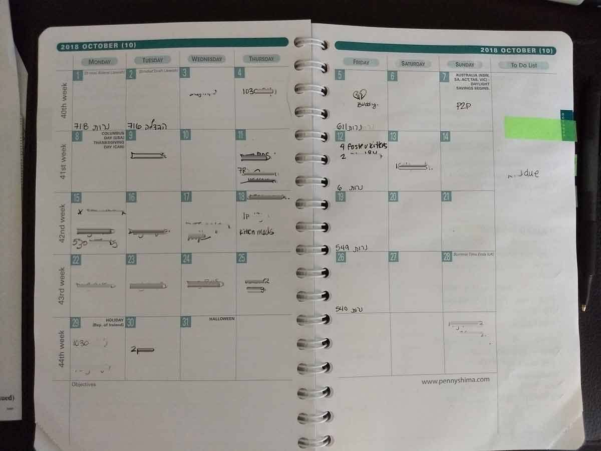 example month of Life Noted Planner