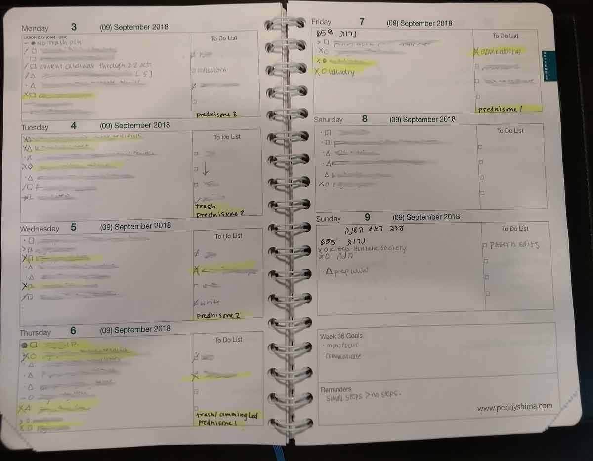 example week of Life Noted Planner