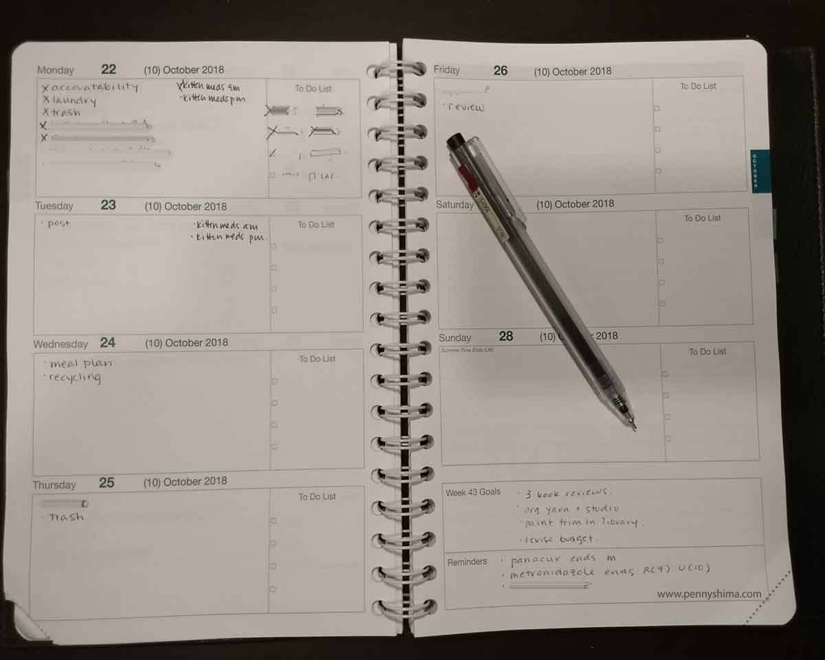 example week of Life Noted Planner, starting to fill out