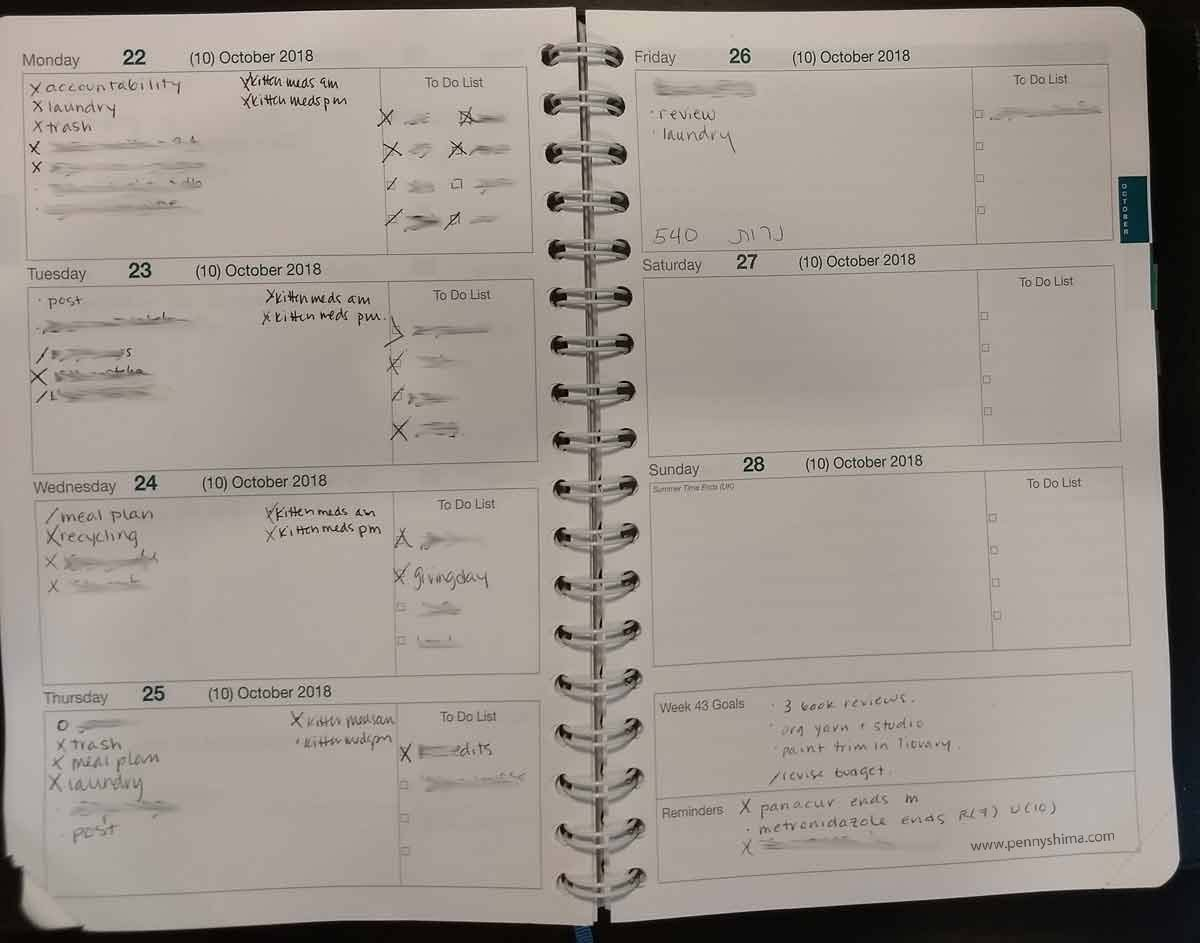 example week of Life Noted Planner, as of Thursday morning