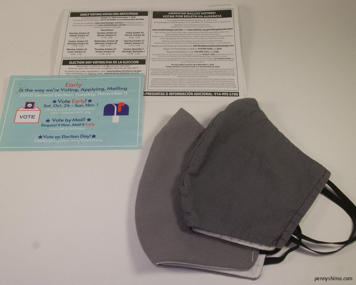 postcard for early voting dates & times with two grey reusable masks