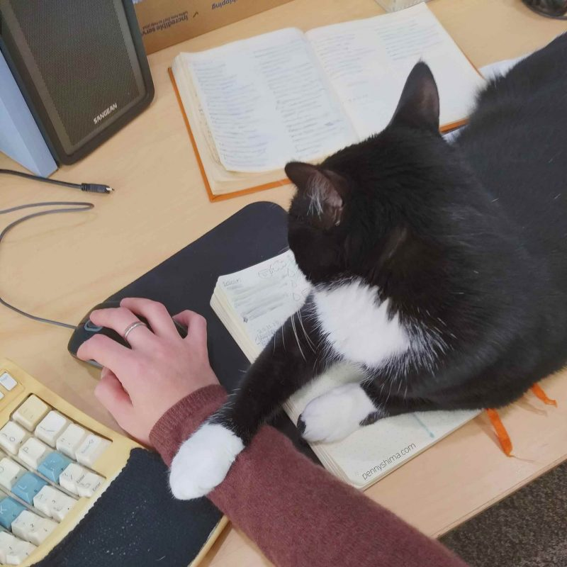 black and white cat sitting on an open notebook next to a Kinesis keyboard with her paw on person's arm.