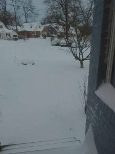 grey landscape, a front yard covered in snow, not shovelled.