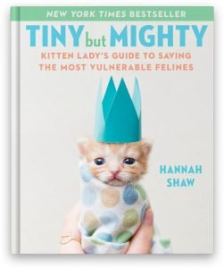 Book Cover for Tiny but Mighty