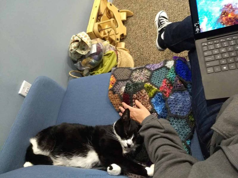 Tuxedo cat stretched out on a medium blue fabric loveseat a paw on on her person's grey sweatshirt hoodie and her head laying partially on a crochet hexagon blanket and her person's hand.