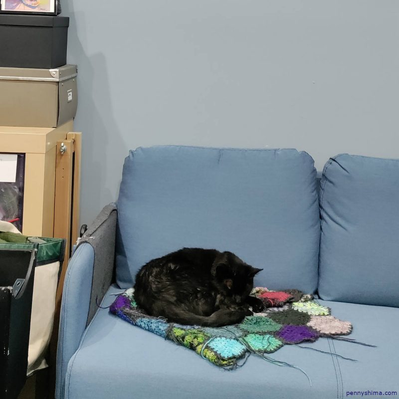 Black cat curled up on a multi-color crochet blanket on a light blue couch.